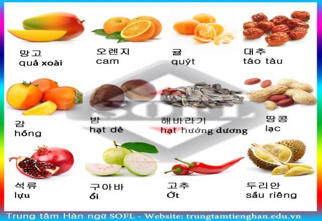 Học từ vựng tiếng Hàn qua hình ảnh về hoa quả