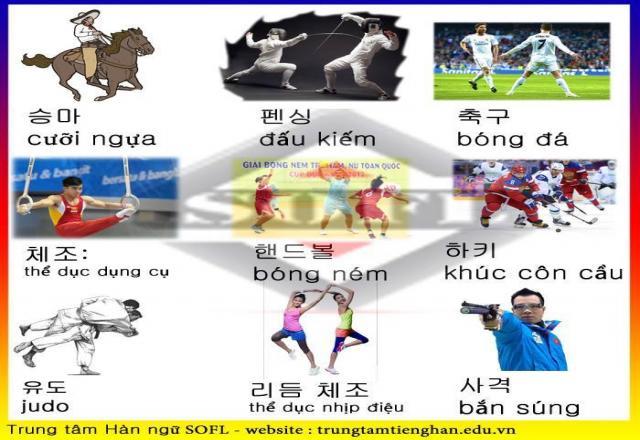 Bảng từ vựng tiếng Hàn các môn thể thao