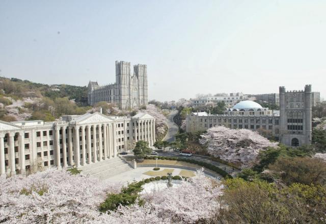 5 loại học bổng giúp bạn cất cánh du học Hàn Quốc