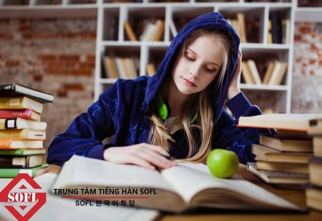 Tổng hợp bộ đề & tài liệu luyện thi TOPIK hoàn toàn miễn phí