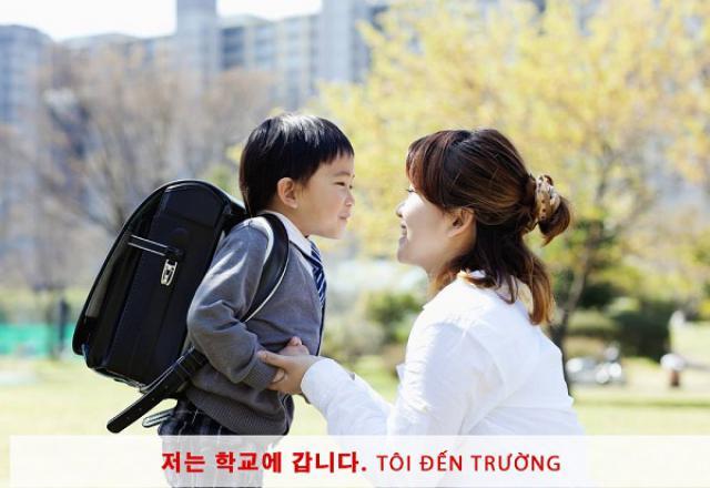 Cách sắp xếp ngữ pháp tiếng Hàn sơ cấp
